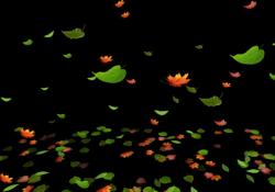 Leaves Particle Set